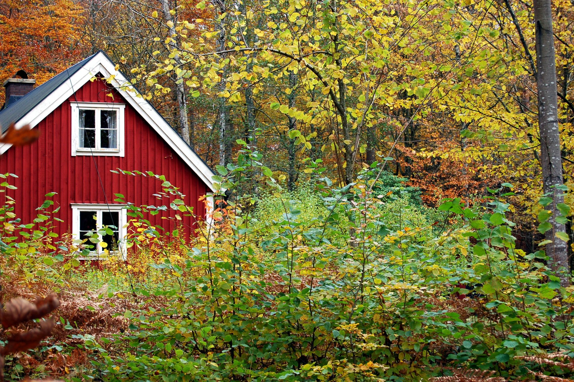 Fall HVAC Care for your Home